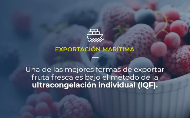 Sobre una foto con un bello tazón de frutos rojos congelados, mostramos que el artículo trata de exportación marítima y que una de las mejores formas de exportar fruta fresca es utilizando el método de la ultracongelación individual (IQF)