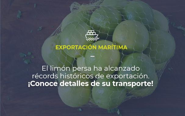 Imagen de una bolsa de limones persa. EXPORTACIÓN MARÍTIMA El limón persa ha alcanzado récords históricos de exportación. ¡Conoce detalles de su transporte!